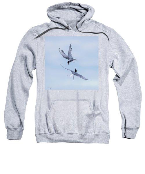Dancing Arctic Terns Sweatshirt