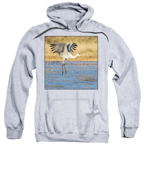 Dancing Crane Sweatshirt