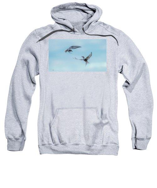 Dancing Terns Sweatshirt