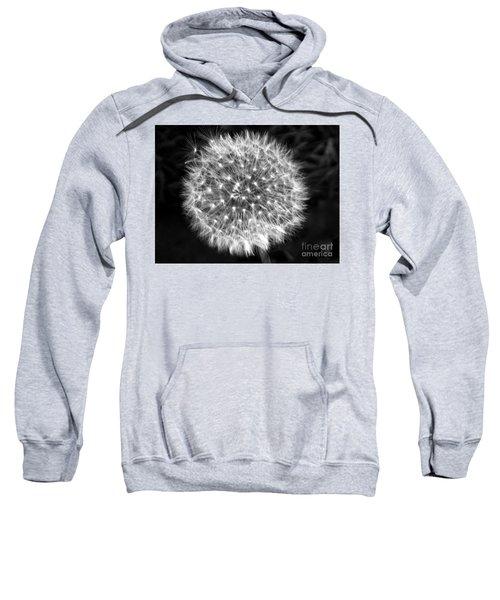Dandelion Fuzz Sweatshirt