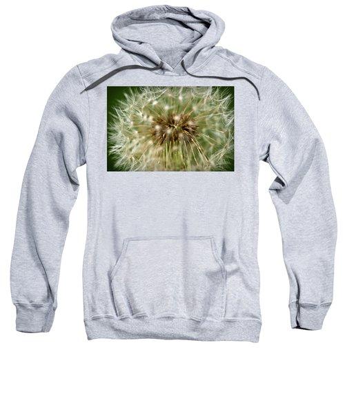 Dandelion Seed Head Sweatshirt