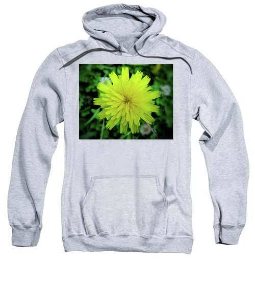 Dandelion Symmetry Sweatshirt