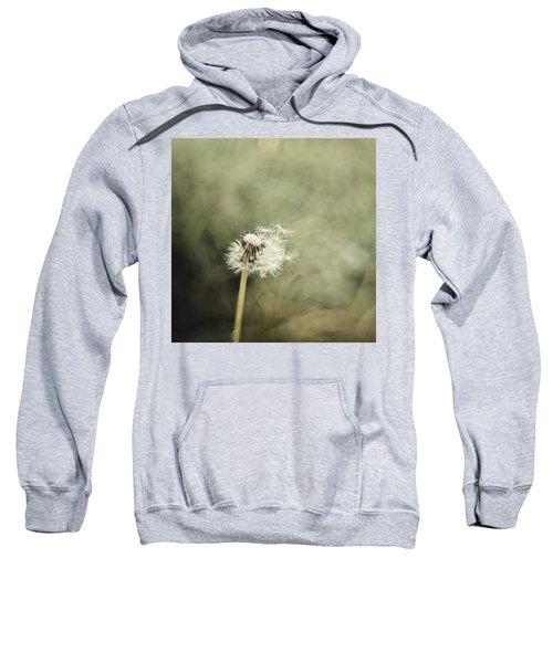 Dandelion  #lensbaby #composerpro Sweatshirt by Mandy Tabatt