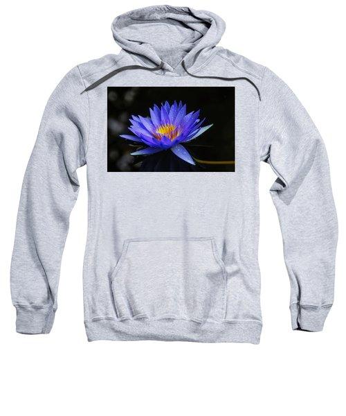 Dark Blue Water Lily Sweatshirt