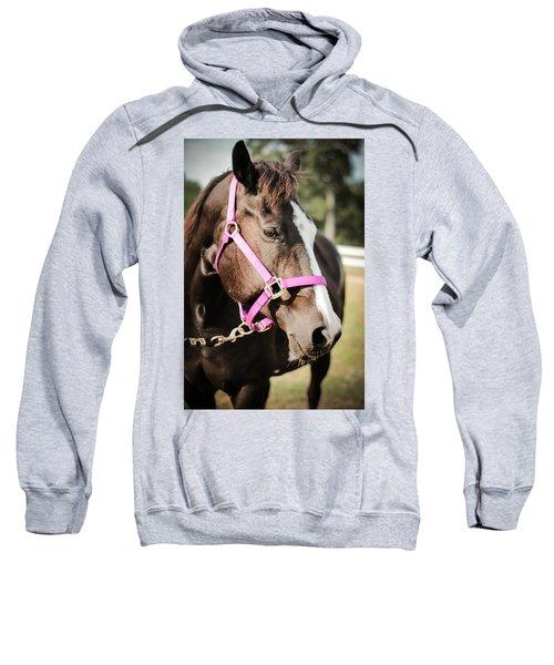 Dark Brown Horse In A Pink Bridle Sweatshirt