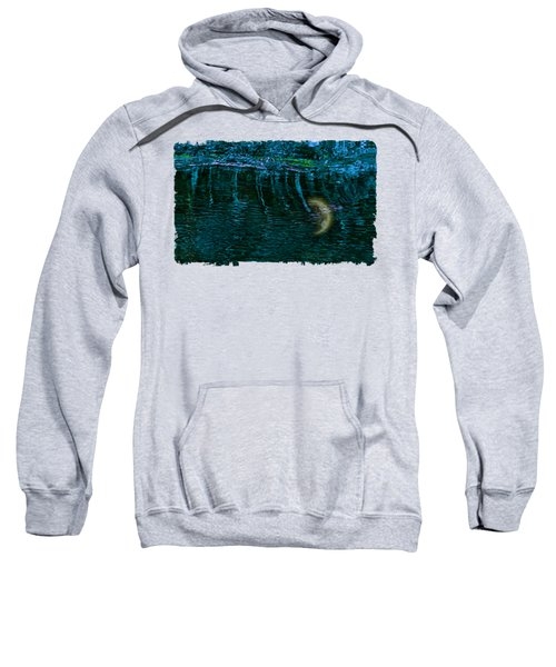 Dark Waters 2 Sweatshirt