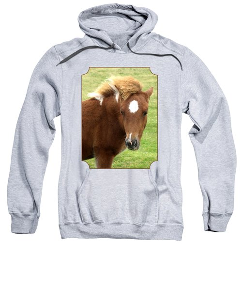 Dartmoor Pony Sweatshirt
