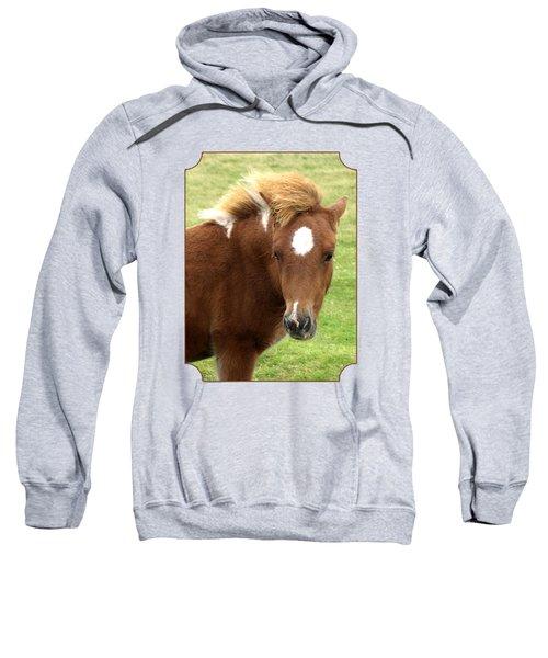Dartmoor Pony Sweatshirt