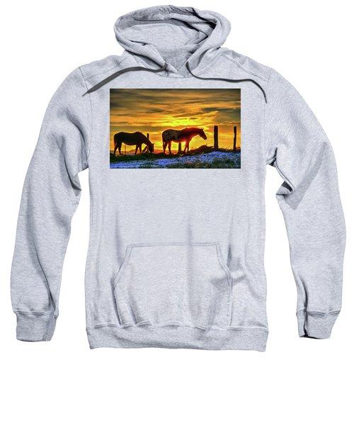 Dawn Horses Sweatshirt