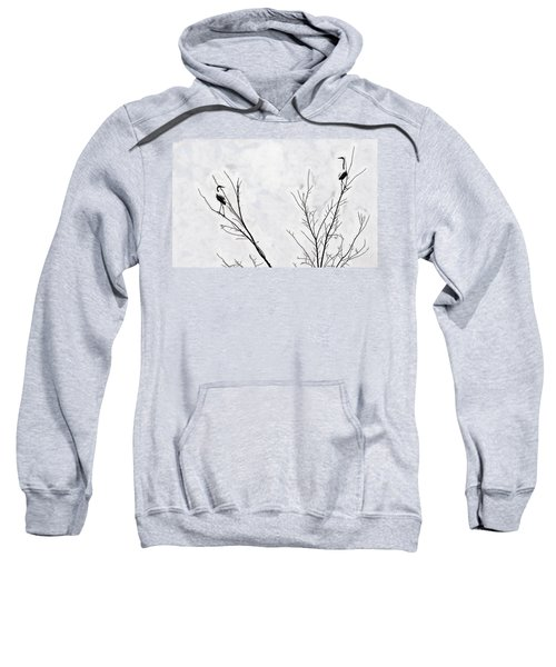 Dead Creek Cranes Sweatshirt