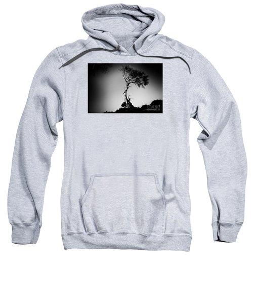 Dead Tree Bw Sweatshirt
