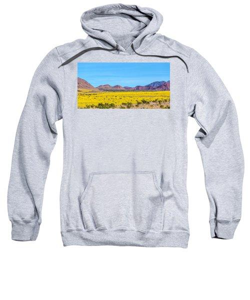 Death Valley Super Bloom 2016 Sweatshirt