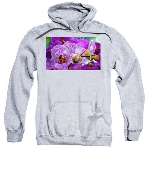 Decorative Fuschia Orchid Still Life Sweatshirt