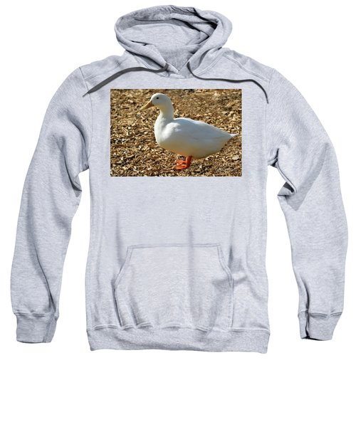 Decorative Duck Series 342717 Sweatshirt