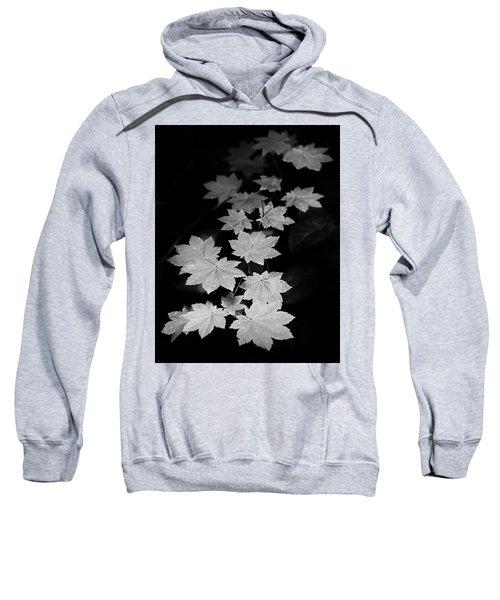 Deep Forest Maple Sweatshirt