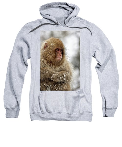 Deep In Thought Sweatshirt