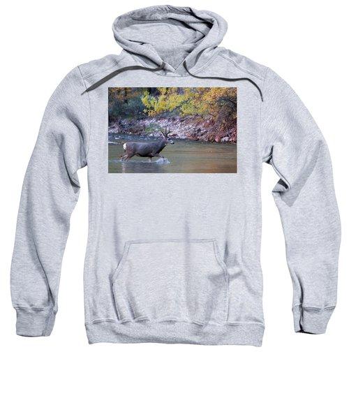 Deer Crossing River Sweatshirt