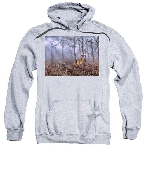 Deer Me Sweatshirt