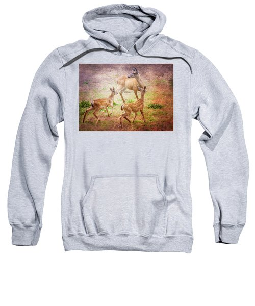 Deer On Vancouver Island Sweatshirt
