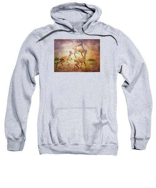 Deer On Vancouver Island Sweatshirt