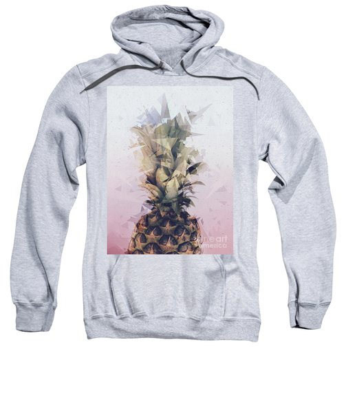 Defragmented Pineapple Sweatshirt