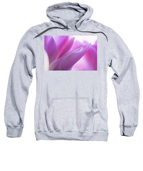 Delicate Beauty Of Cyclamen Flower Sweatshirt