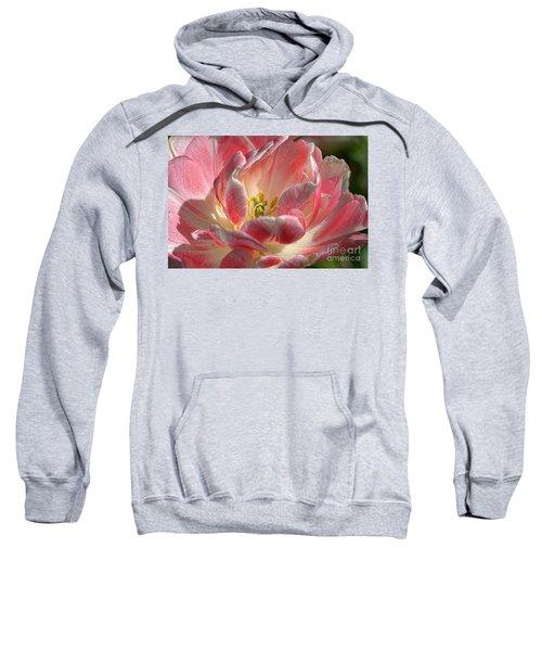 Delicate Sweatshirt