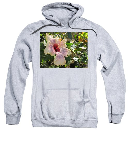 Delicate Expression Sweatshirt