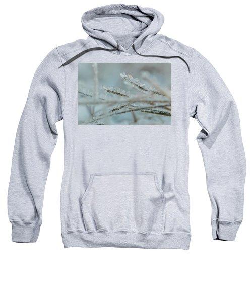 Delicate Morning Frost  Sweatshirt