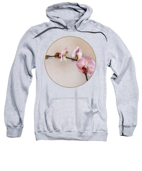 Delicate Pink Phalaenopsis Orchids Sweatshirt