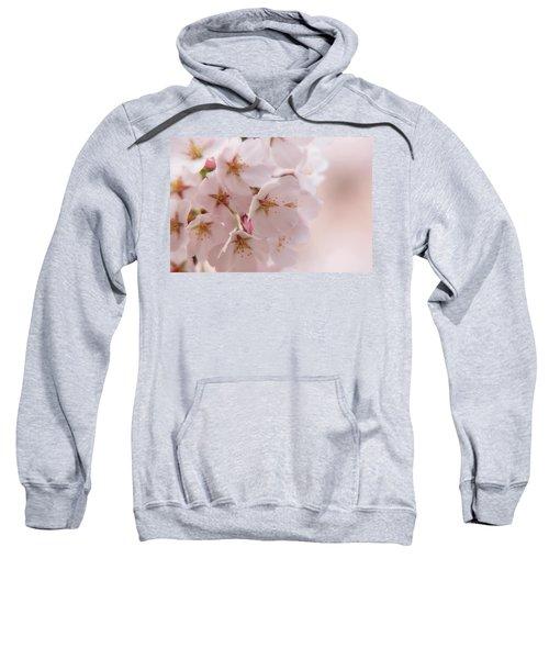 Delicate Spring Blooms Sweatshirt
