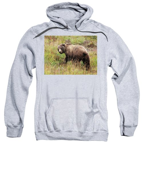 Denali Grizzly Sweatshirt