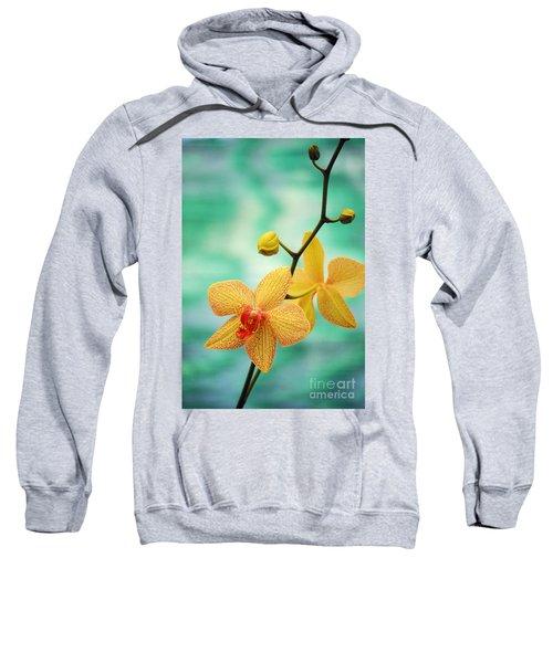 Dendrobium Sweatshirt