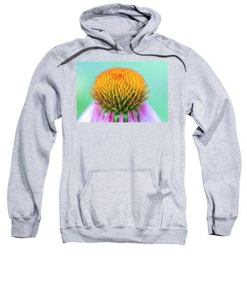 Depth Of Field Sweatshirt