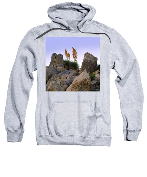 Desert Flags - Cropped Version Sweatshirt