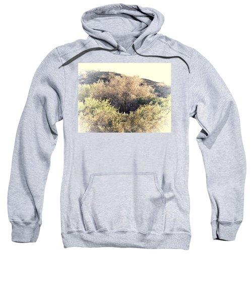 Desert Ironwood Afternoon Sweatshirt