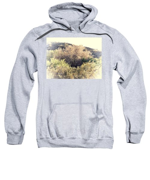 Desert Ironwood Afternoon Sweatshirt