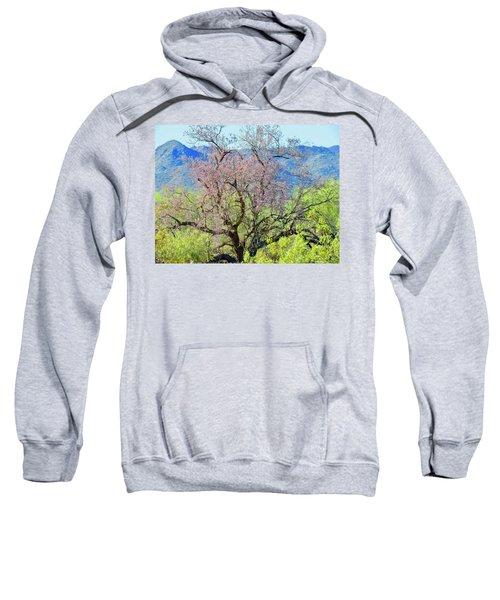 Desert Ironwood Beauty Sweatshirt