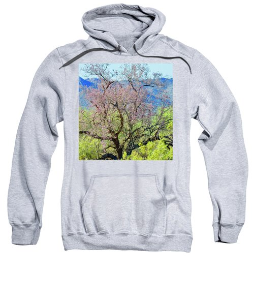 Desert Ironwood Beauty Sweatshirt