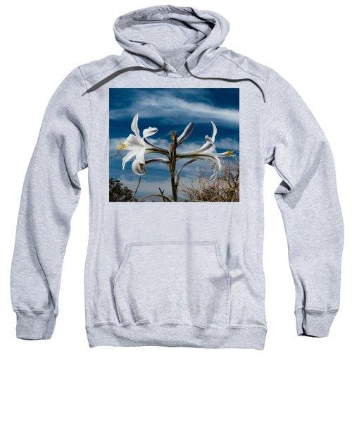 Desert Lilly Close Up Sweatshirt