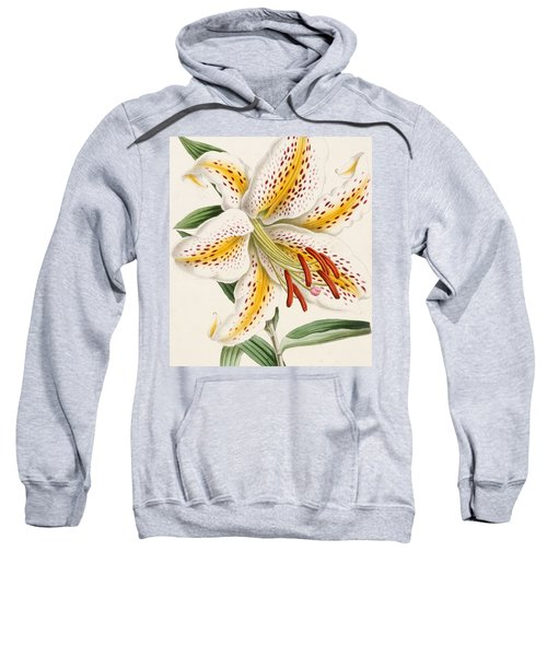 Detail Of A Lily Sweatshirt