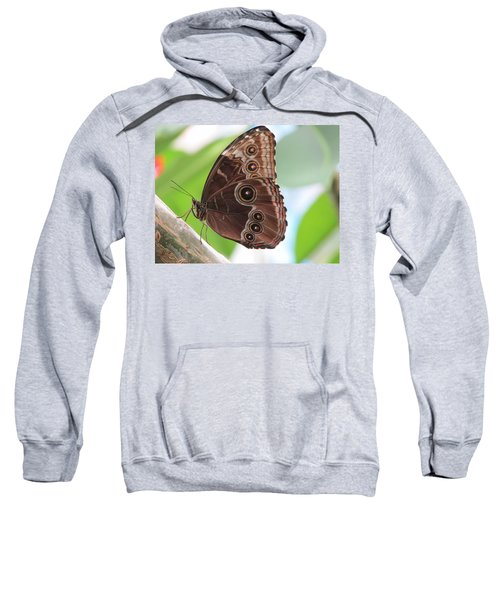 Detailed Wings Sweatshirt