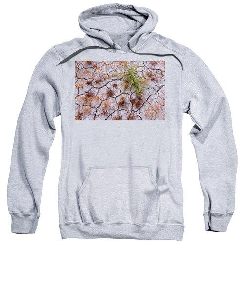 Details Of The Playa Sweatshirt