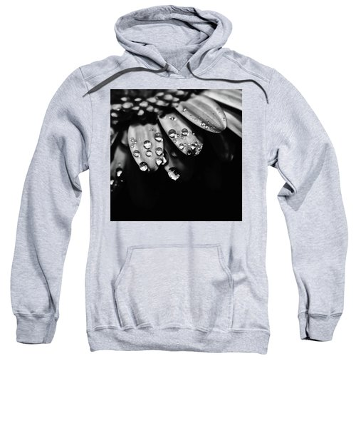 Dew Drops Sweatshirt