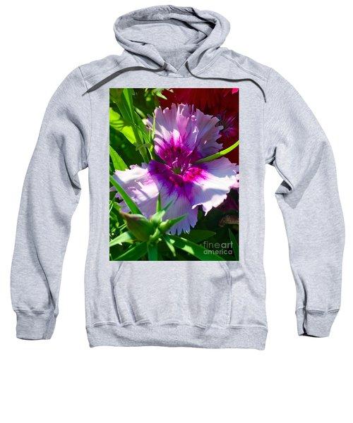 Dianthus Carnation Sweatshirt