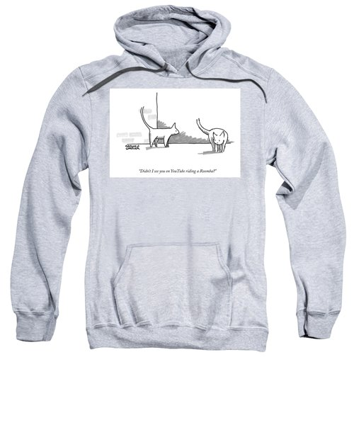 Didn't I See You On Youtube Riding A Roomba? Sweatshirt