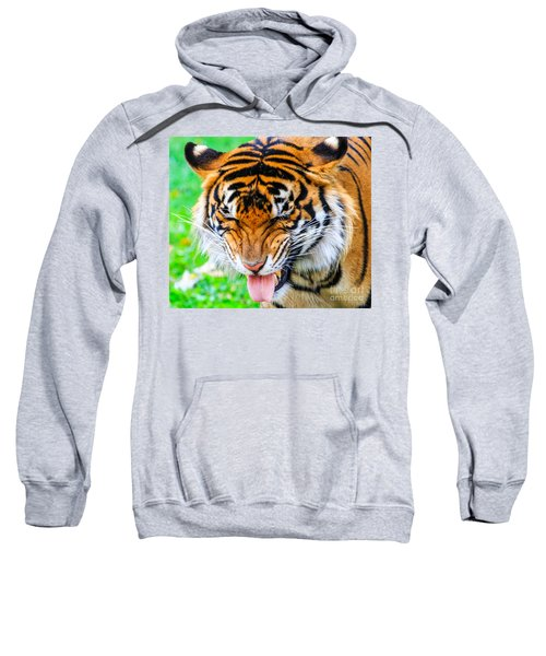 Disgusted Tiger Sweatshirt