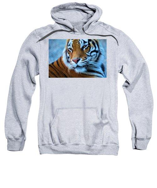Distracted Sweatshirt