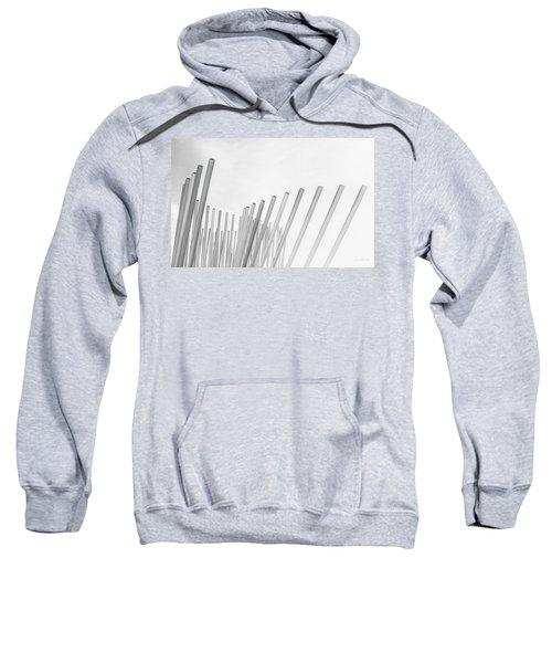 Divided We Stand Sweatshirt