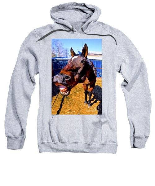 Do You Have A Treat For Me? Sweatshirt